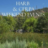 LA Weekend, Los Angeles Weekend Events and Activities 3/6 – 3/8