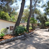 Multiple Offers in La Crescenta 1