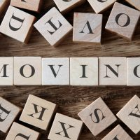 Moving is my business, but I don't want to move 2
