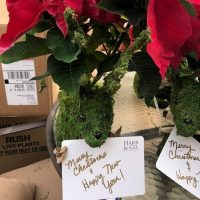Harb and Co. Real Estate Update and Holiday Gifting